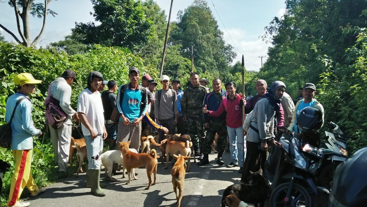 Masyarakat Muaradua Kisam, bersama TNI memburu babi hutan tersebut merupakan salah satu cara agar pertanian dan perkebunan warga tidak dirusak